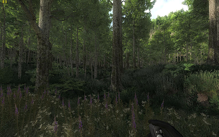 Topic : Is it Reality... or Fantasy?  ArmA 3 Engine TheHunter_ss_05